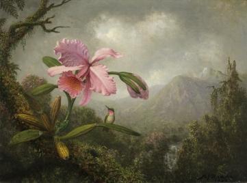 HEADE, Martin Johnson_Orquídea y colibrí cerca de una cascada de montaña, 1902_(CTB.1979.44)
